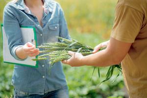 Voeding en voorlichting